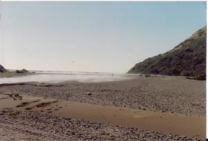 Estuary_90